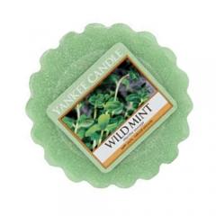 Wild Mint - wosk zapachowy