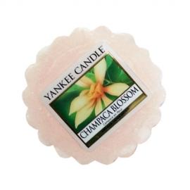 Champaca Blossom - wosk zapachowy